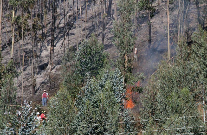 Otavalo.- Vecinos y moradores del sector colaboraron para controlar el flagelo. |Foto: Archivo (AG)